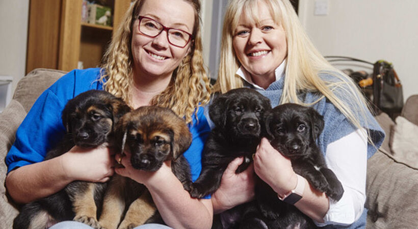 Melton Support Services backs guide dog puppy training
